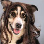 Unsere Hundefriseurin…
